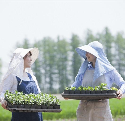 緑と文化に触れるグリーンツーリズムのすすめ