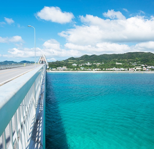 冬こそ楽しめる沖縄、魅惑のアクティビティ