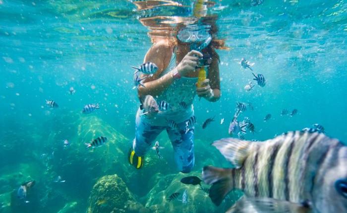 カリブ海の島で過ごすとっておきのバカンス
