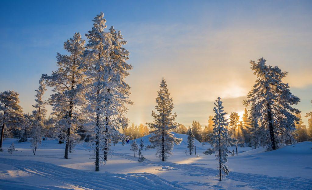 フィンランドで楽しむウインター・ホリデー