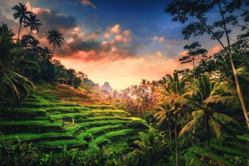 インドネシア、バリ島