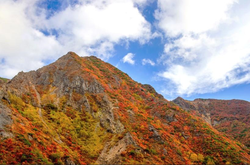 那須高原で野生と温泉を満喫