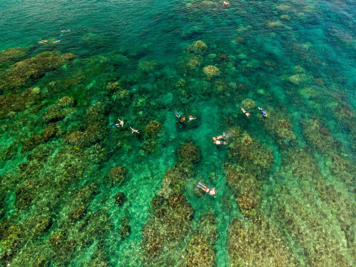 【マウイ島】シュノーケリングはホノルア湾がオススメ!